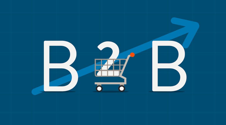 13 marques e-commerce B2B dévoilent les secrets de leur succès évolutif en ligne