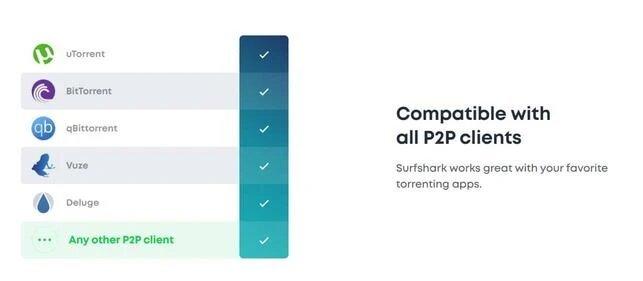 Surfshark - P2P