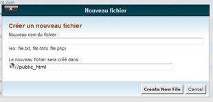 Comment créer un nouveau fichier dans le gestionnaire de fichier dans cPanel