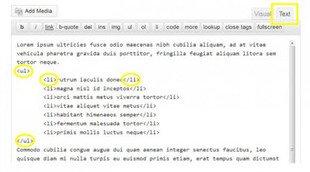 code html des listes à puces dans Wordpress