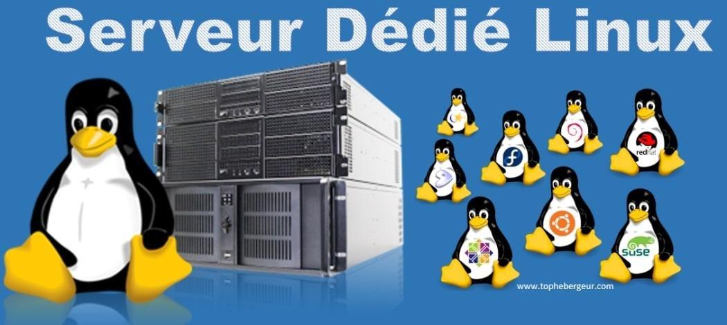 Serveur Dédié Linux